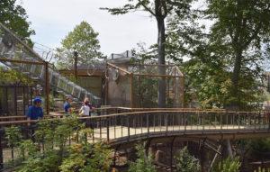 Cultural - Cleveland Natural History Museum - Panzica Construction