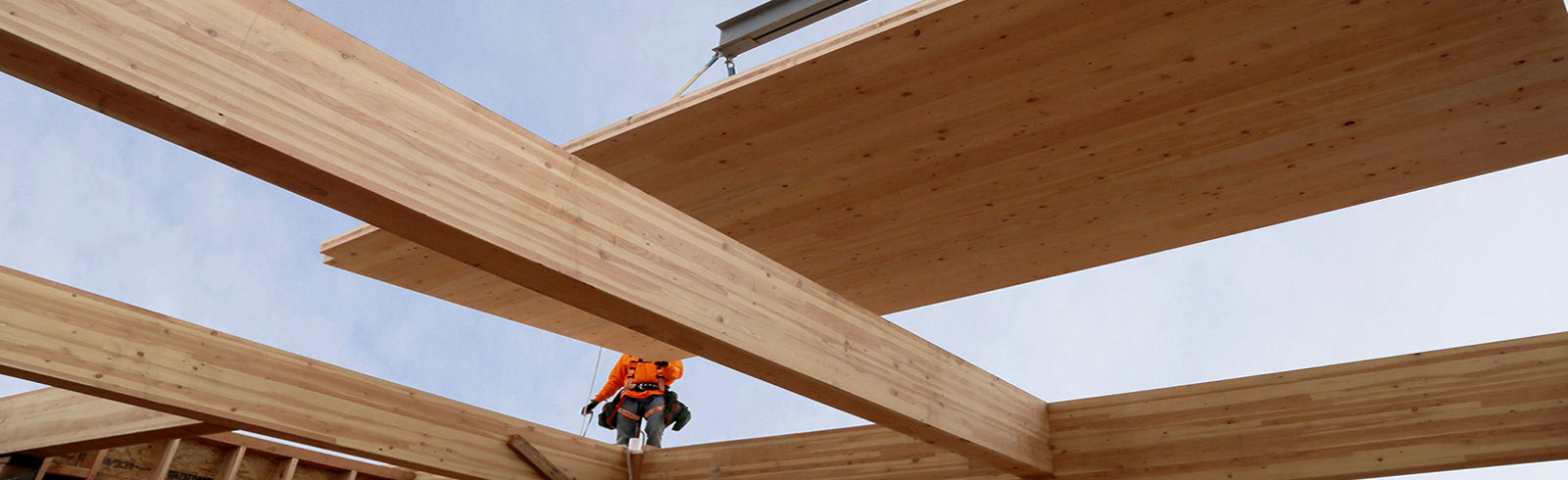 Mass Timber Construction by Panzica